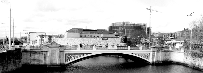 20090407_irishbridge3