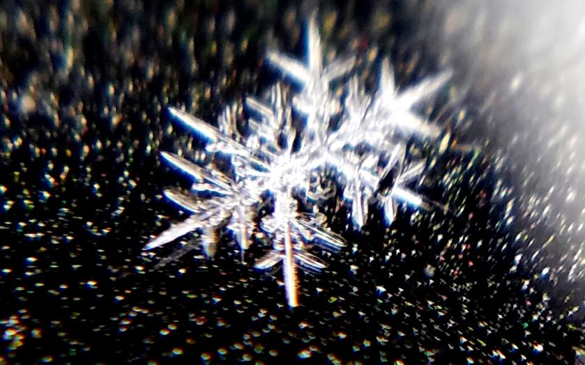 Macrolens-snowflake-20170104_143513.jpg