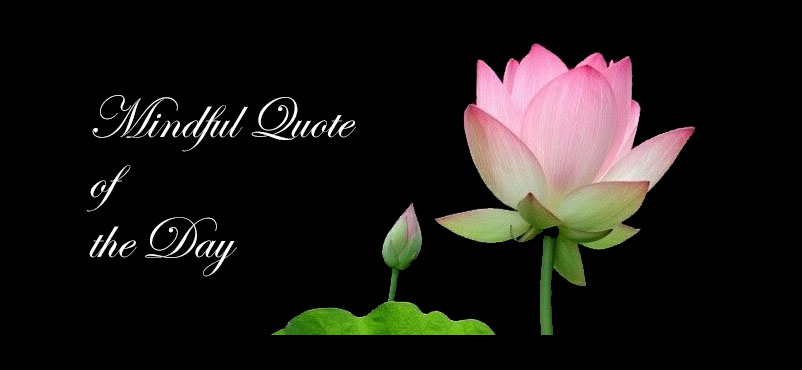 Mindful Quote of the Day #25 – Netdancer's Musings