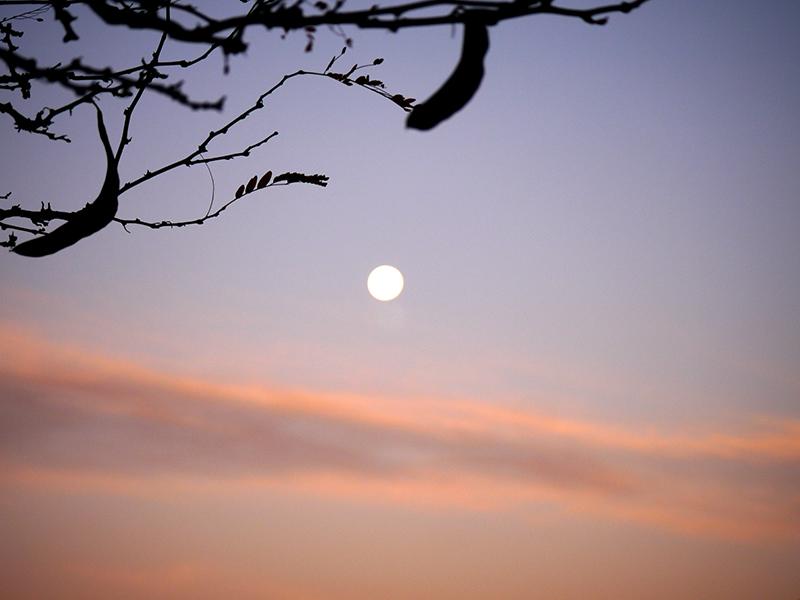moonset-2015-10-28-07-800