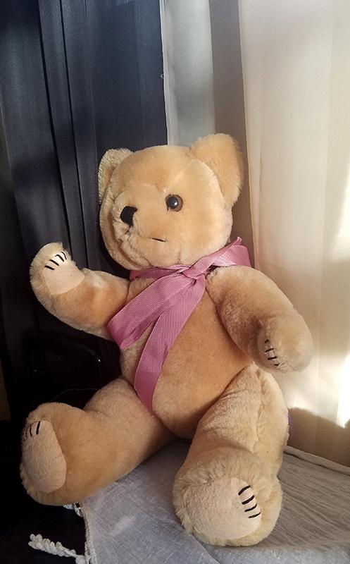 teddybear20170128_082823_001-800