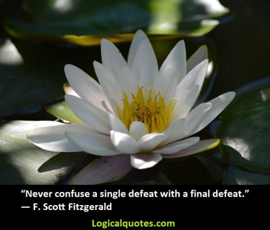 Never confuse a single defeat with a final defeat.F. Scott Fitzgerald