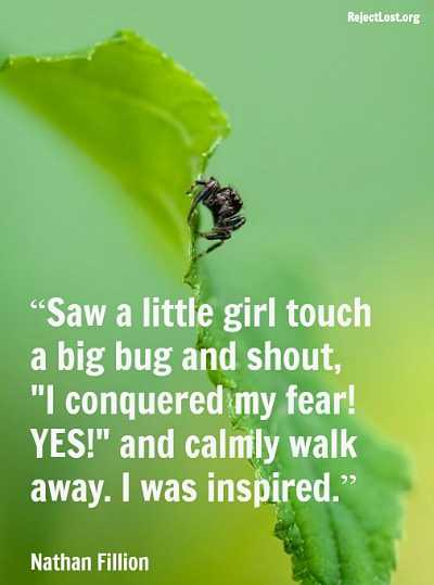 Saw a little girl touch a big bug and shout