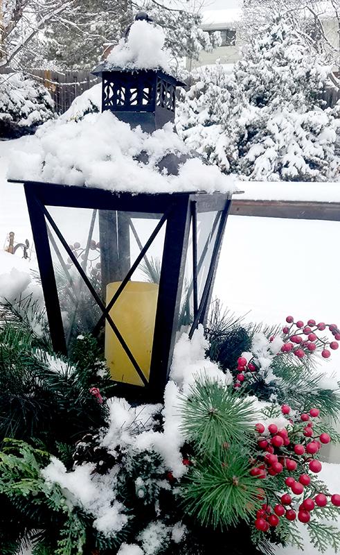 snowylantern20170116_125549-800