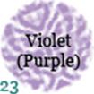 023-violetpurple