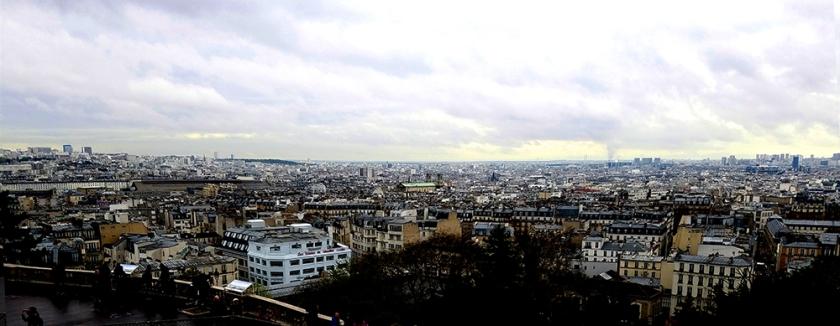 Paris-Dense-1000-20160411_131354
