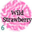 06-wildstrawberry