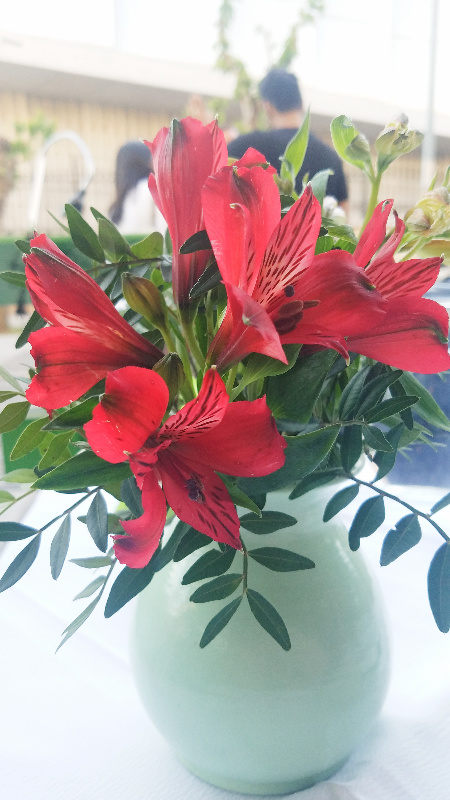flowers-800-20170413_182343