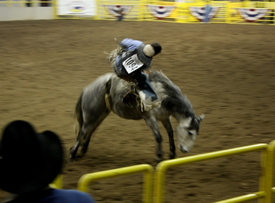 00-cowboyIMG_1325