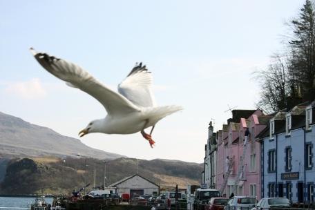 Portree-Isle of Skye, Scotland