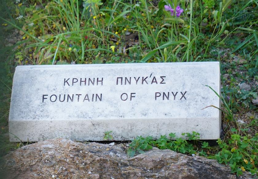 FountainofPynx-DSC00536-800