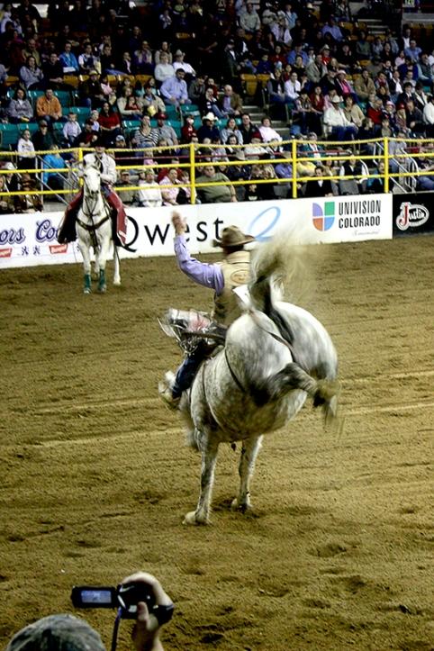 rodeoIMG_1315