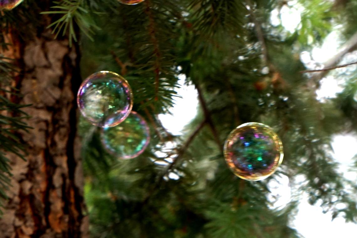 00-3bubbles-DSC01154.jpg