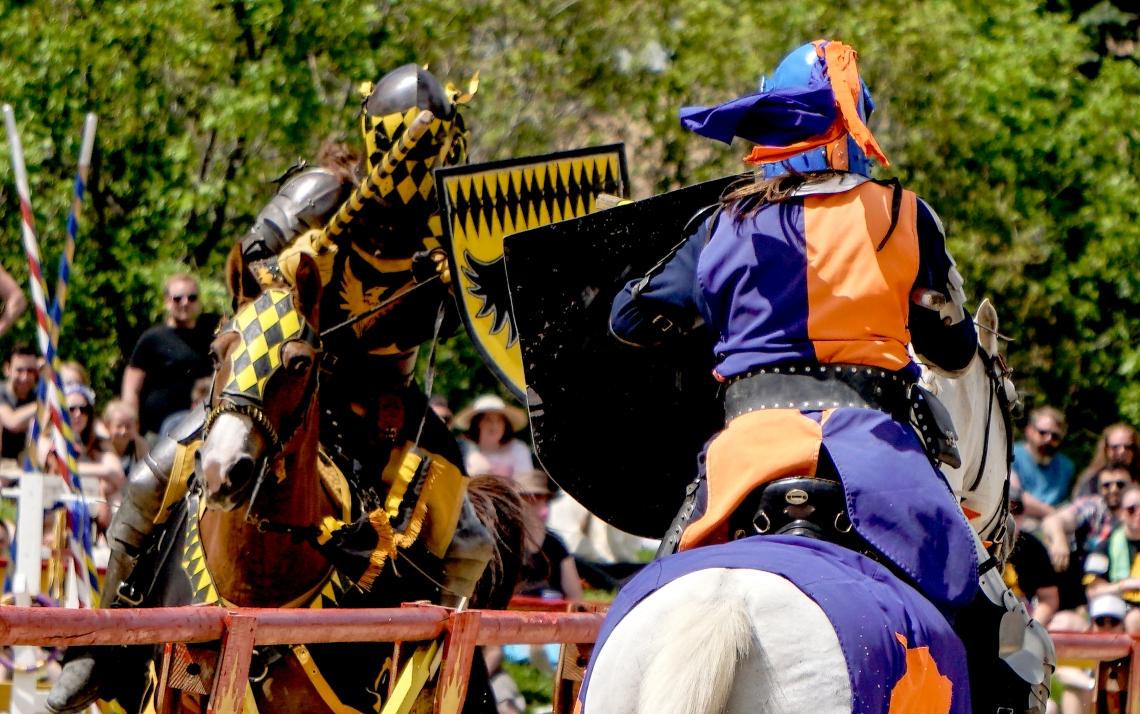 Renaissance Fair 2017