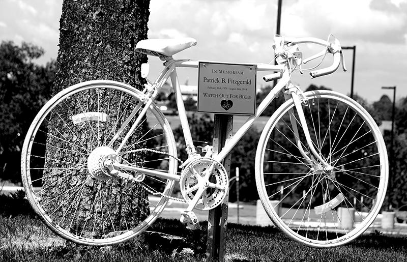 bikesignDSC00658-800