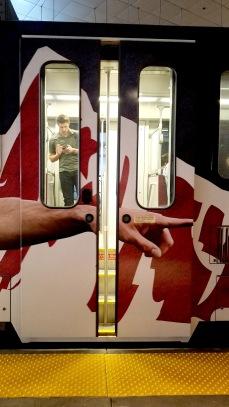 train_door2