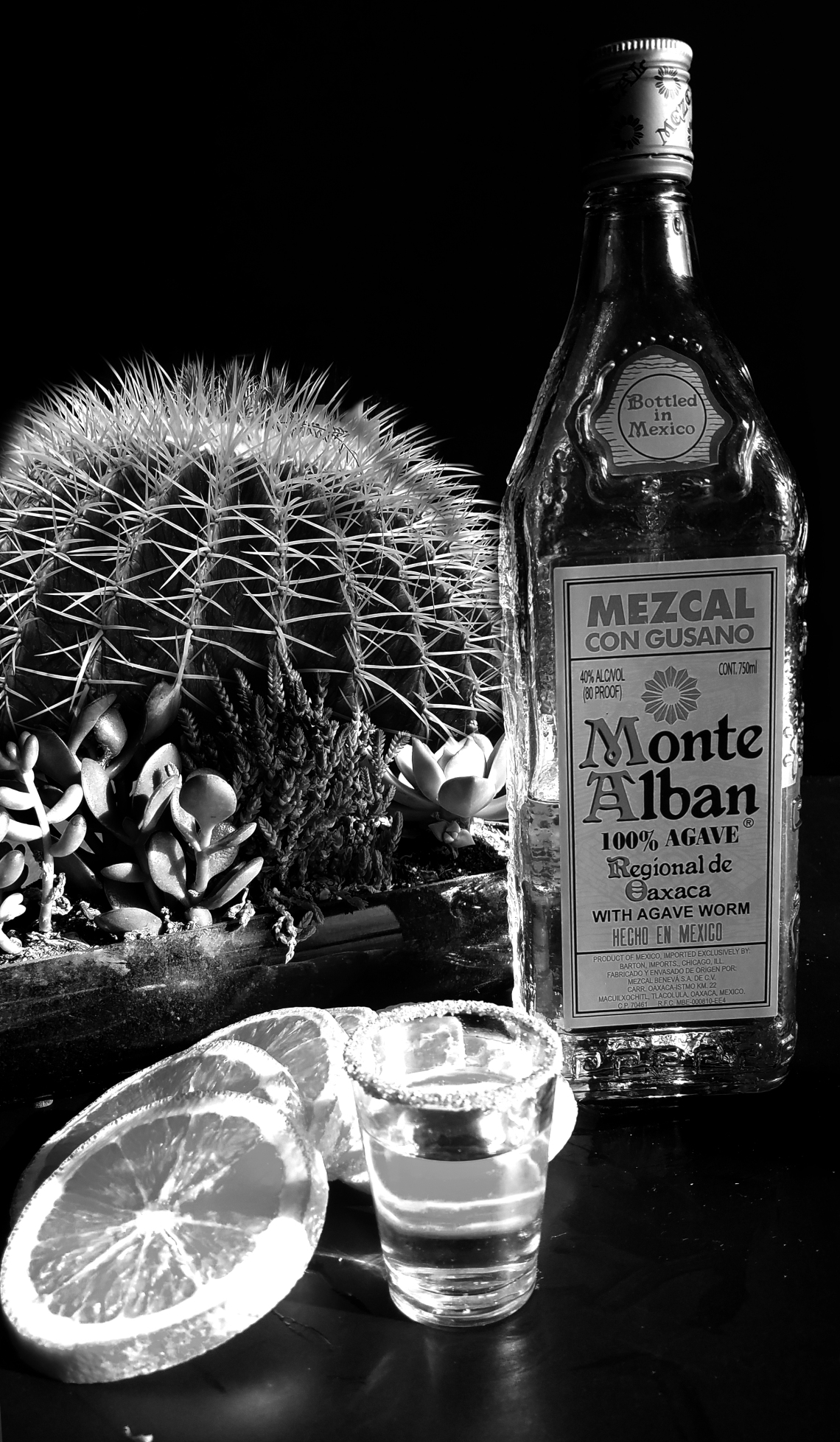 mezcal-2-20170526_174456-monochrome