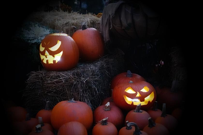 Pumpkins-DSC03525_A