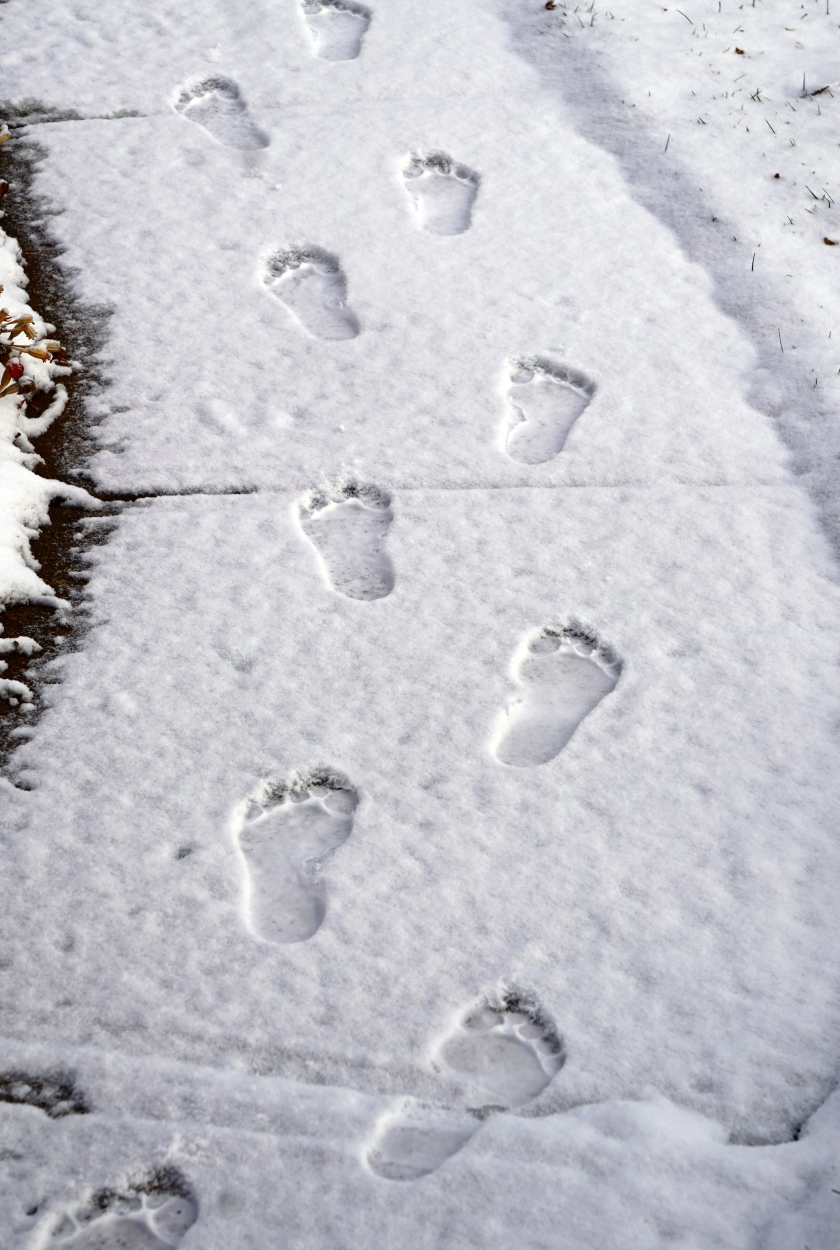 footprintsinthesnowDSC03746B