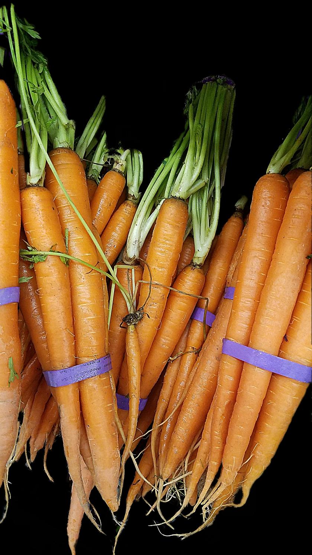 orange-carrots-20170109_163133A