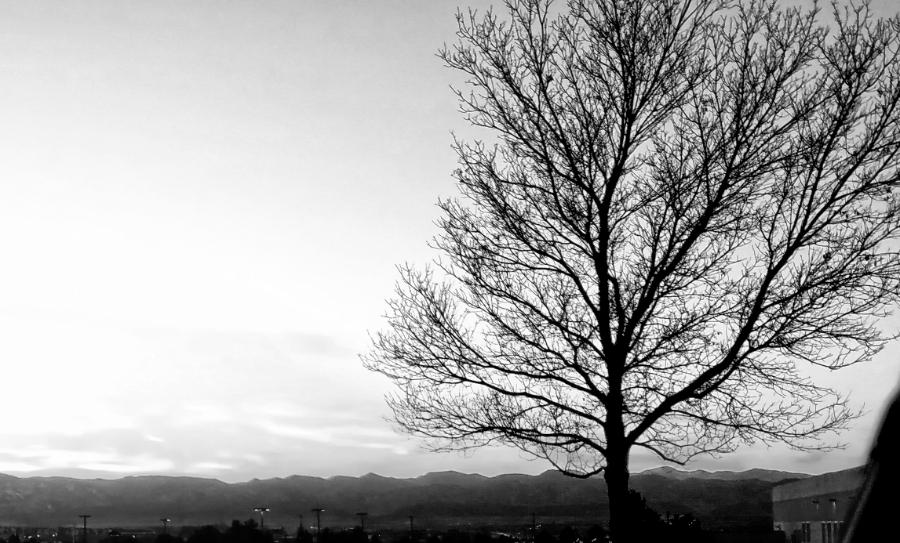 00-20180104_164722_sunset-Monochrome-900