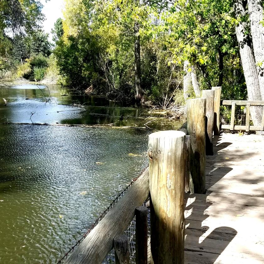 00-riverstream-20171001_142555_001_37391651376A