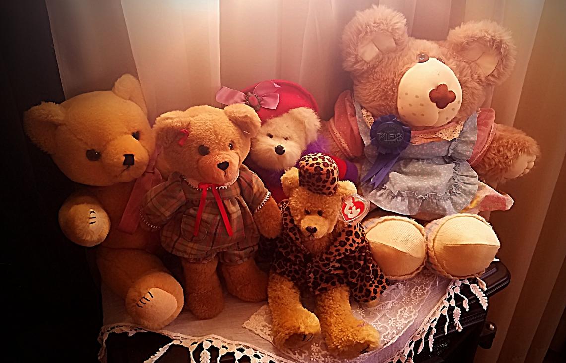 20170102_125446-TeddyBears