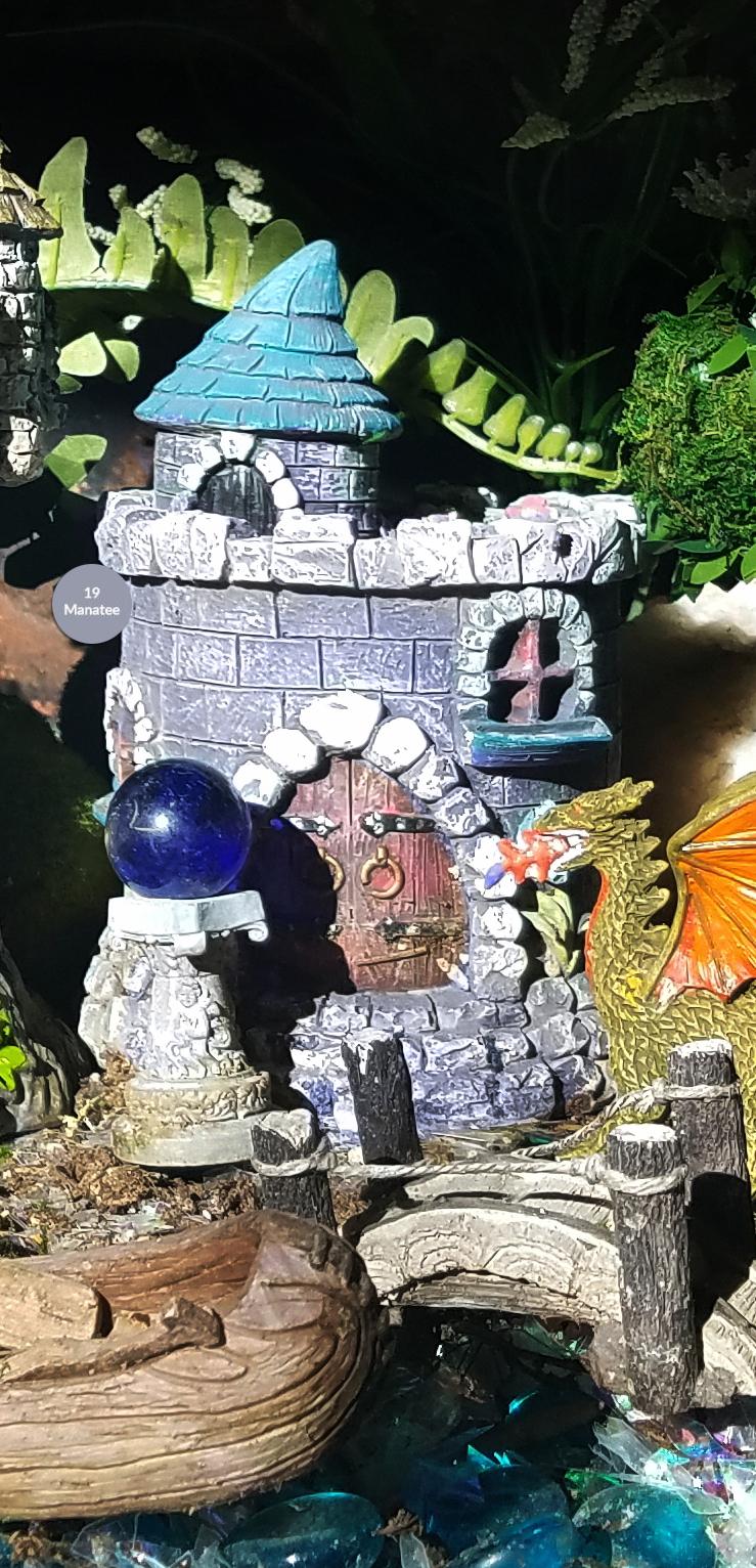 FairyGarden2018-20180114-manatee