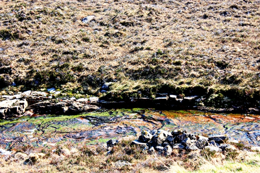 00-highlands-rivulet-20090403_50_A900