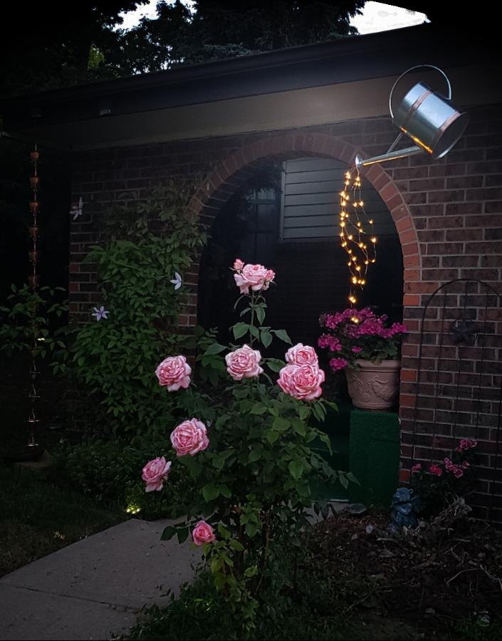 00-entryway-wateringcan-lightsA900