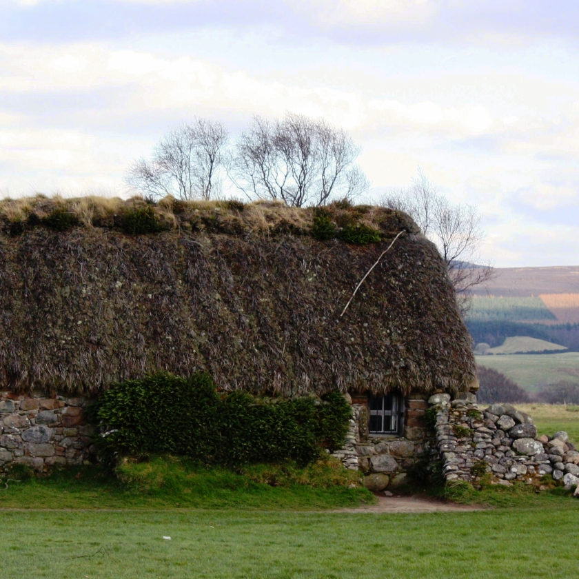 00-ThatchedRoofCulloden-IMG_1728_sq
